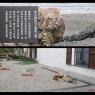 Hangzhou anno domini park2
